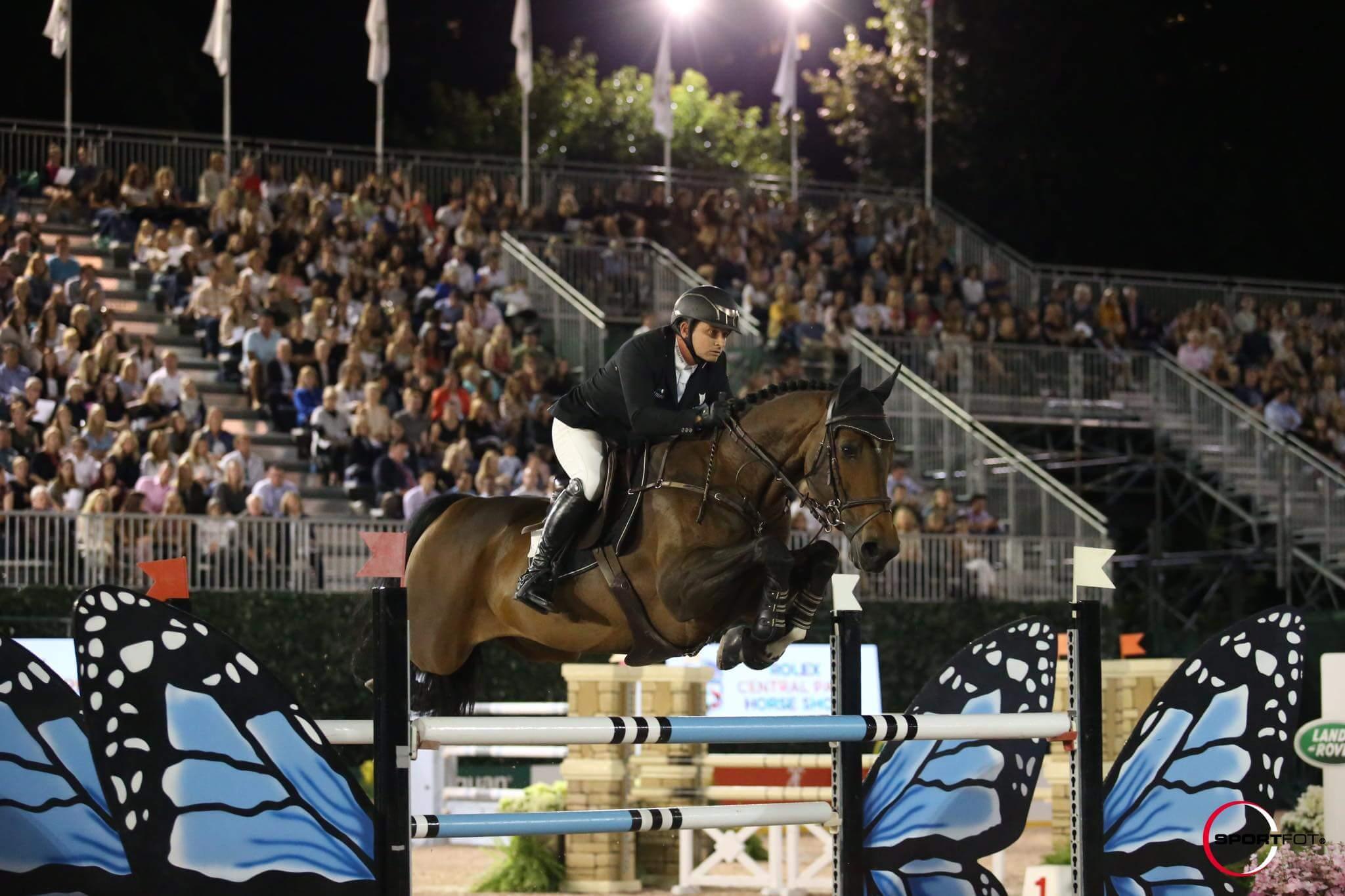 GIGOLO VAN DE BROEKKANT @ Central Park Horse Show