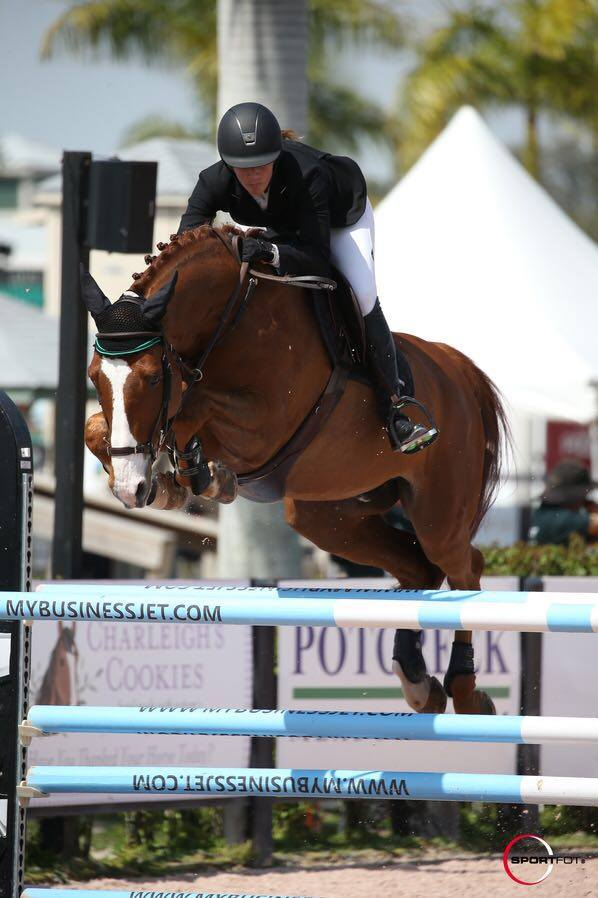 Excellent results at WEF week 8