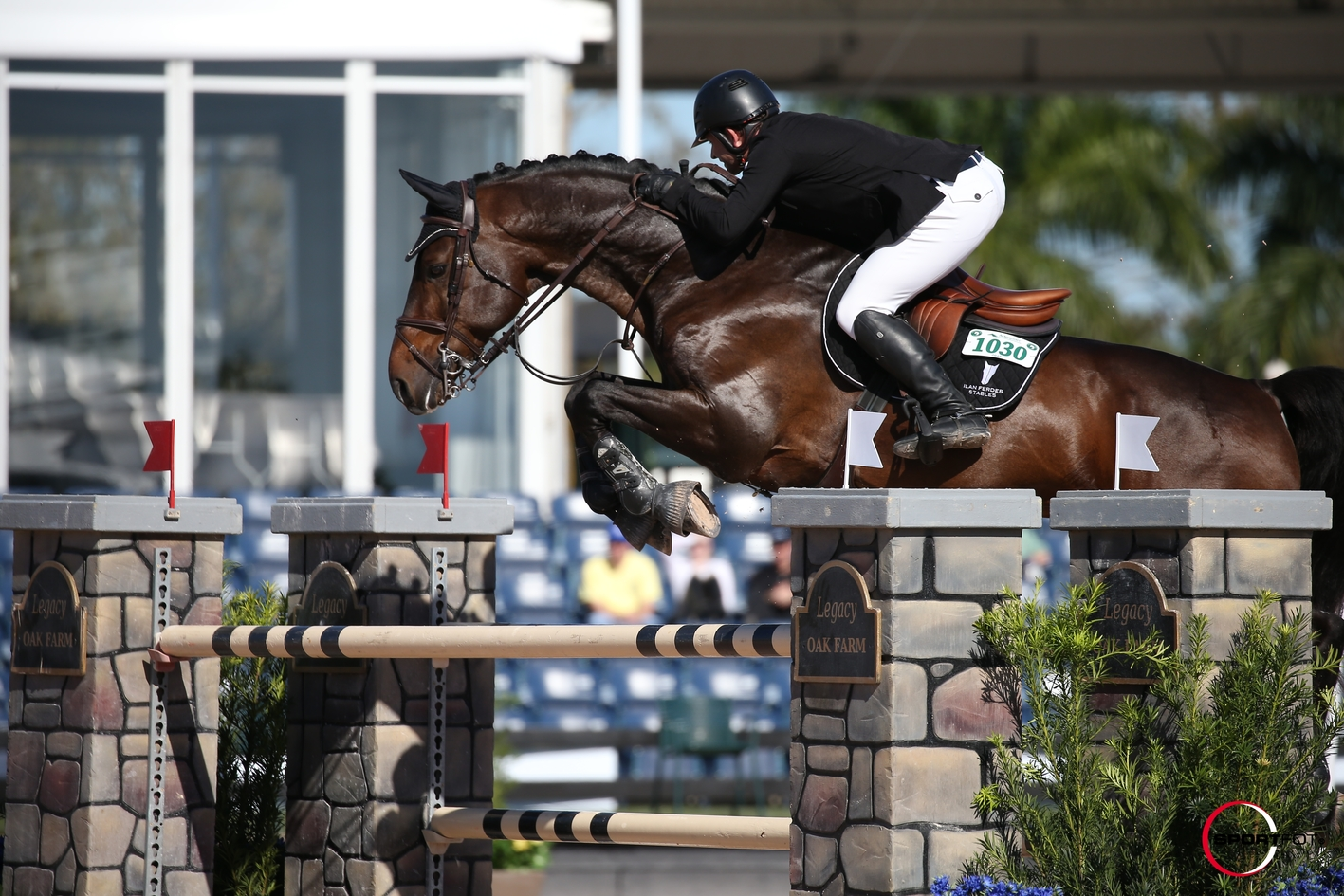 Warrant wins WEF Grand Prix
