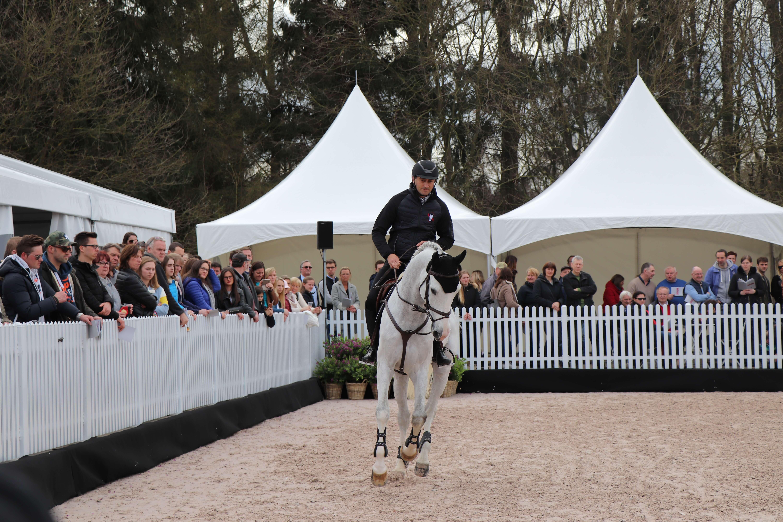 Stallion Show at Tal Milstein Stables
