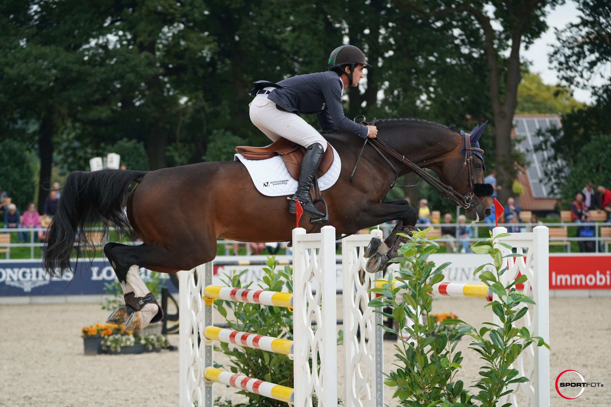 Luigi D'Eclipse with a nice clear in yesterdays 2* qualification at the European Championships in Riesenbeck!