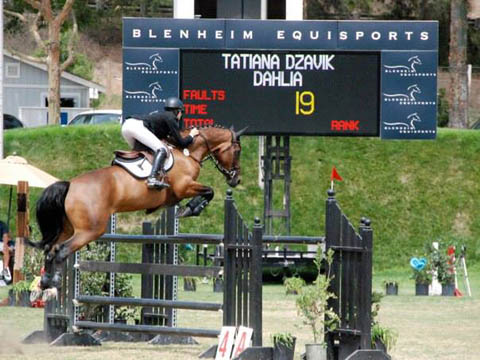 TMS horses score at Blenheim Equisport