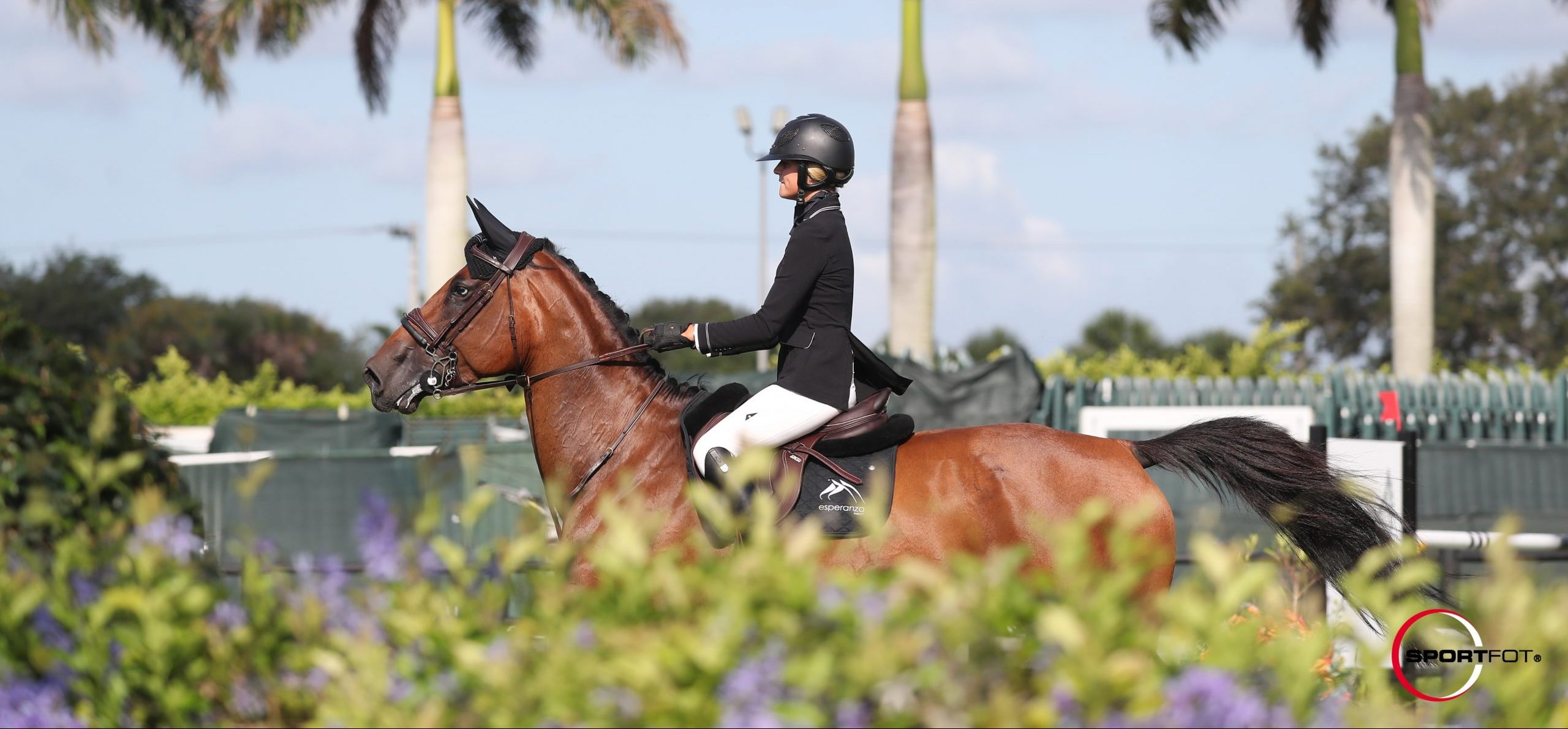 Nice round for reference DIVA Z in the 1.30m class in Tryon!